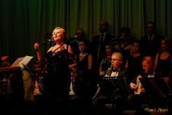 Berlin eski dostlar konseri-1-21