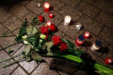 Hanau Katliamı-Brandenburger Tor-1-26